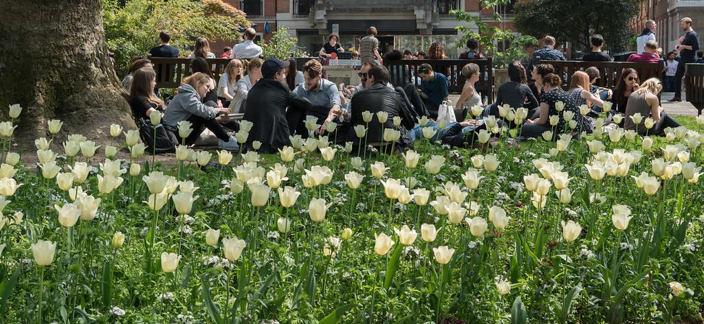 Spring in Soho Square