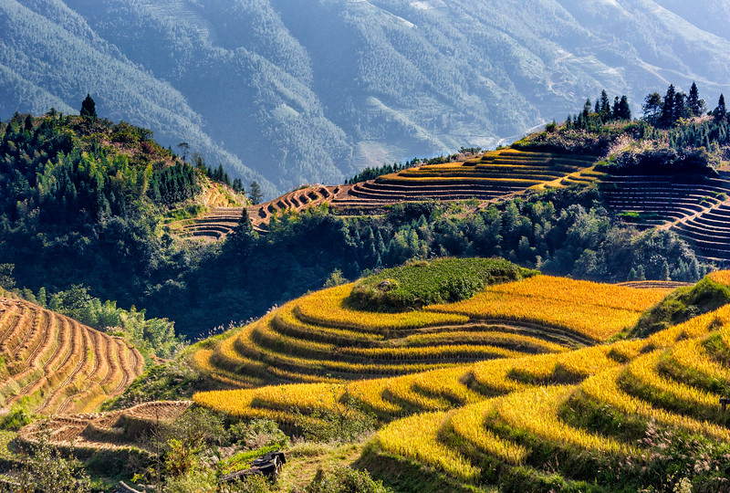 Ping'An Rice Terraces