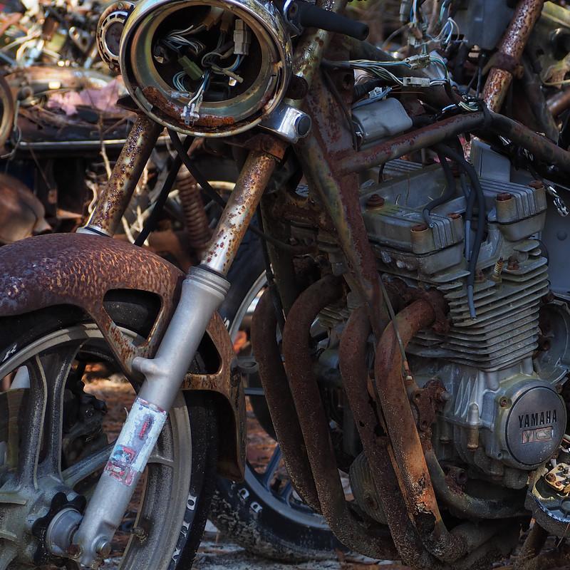 Rust-B-JoAnn Sluder-Exhausted