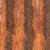 Rust-B-Joanne Lentz-Rustic Wall