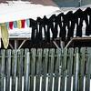 ROW-A-Tom Reedy-Amish Laundry Day