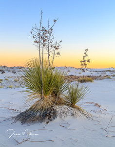 White Sands Dusk, White Sands National Monument, New Mexico, December 2015