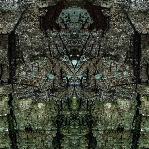 20140129_7769-2-387