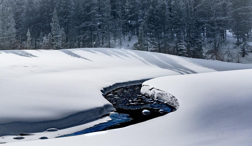 5-Master-Assigned_-_Negative_Space-2-Charli_Bova-Winter_Stream
