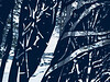 3-Intermediate-Assigned_-_Negative_Space-DNP-Hiroshi_Kamaya-Winter_stream_through_the_iron_gate