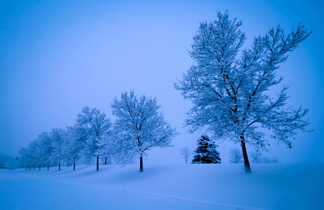 5-Master-Open-DNP-Larry_Whittaker-New_Snowfall