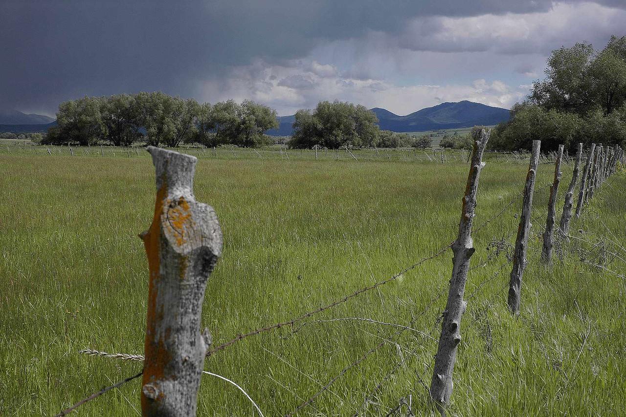 3-Intermediate-Open-DNP-Paul_Randle-Incoming_Storm