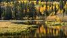 3-Intermediate-Open-2-Tyler_LaMont-Silver_Lake