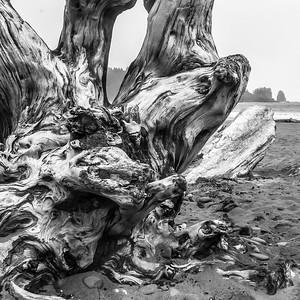3-Intermediate-Open-DNP-Phillip_Adams-Seaside_Sculpture