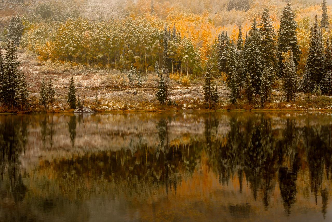 5-Master-Open-DNP-Larry_Whittaker-Natures_Texture