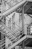 5-Master-Open-DNP-Ray_David-Introspective