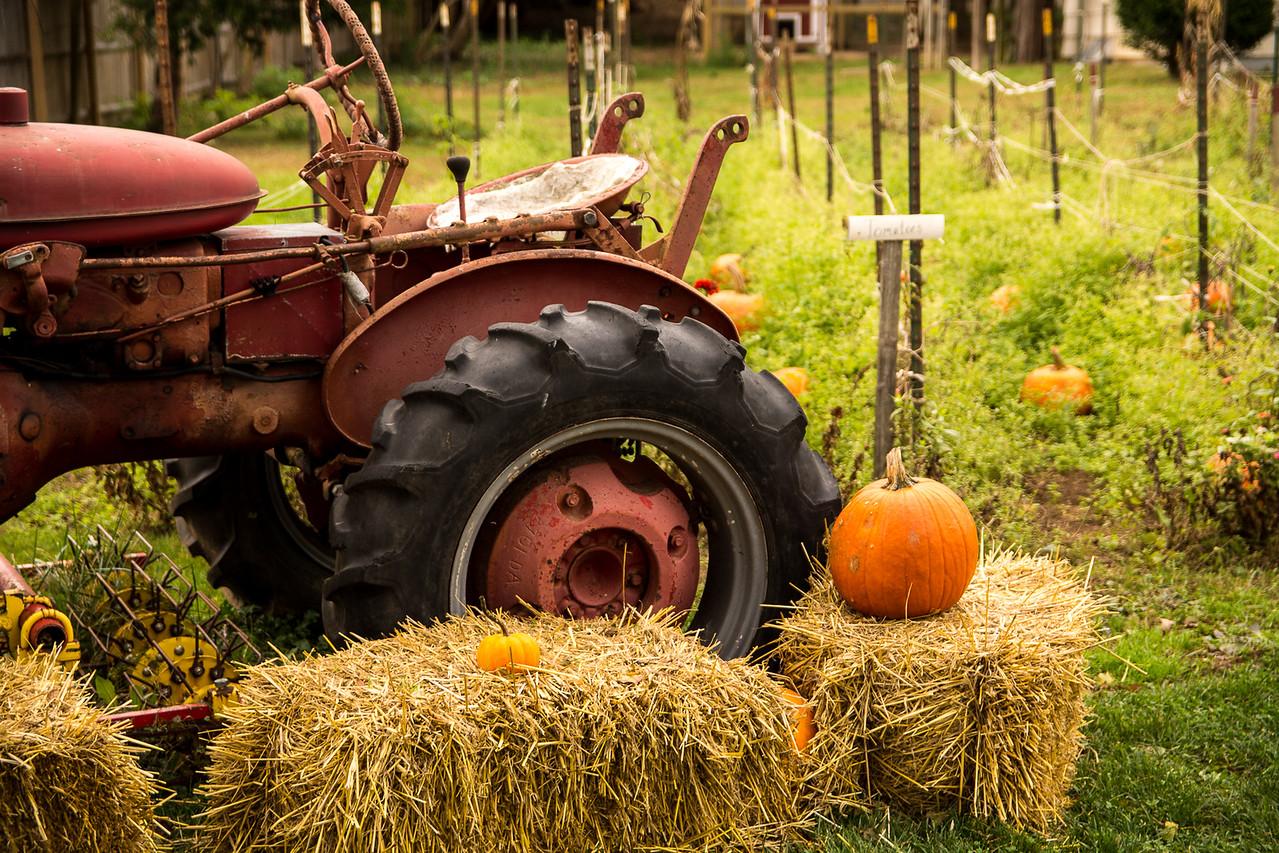 3-Intermediate-Open-DNP-Tyler_LaMont-Farm