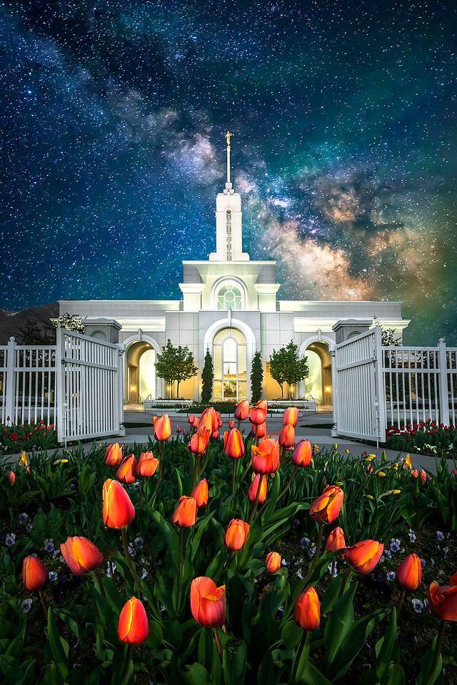 5-Master-Open-DNP-Shayne_Shaw-Celestial_night