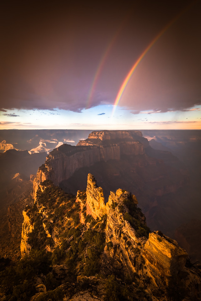 5-Master-Open-4-Richard_Ansley-Royal_Rainbows