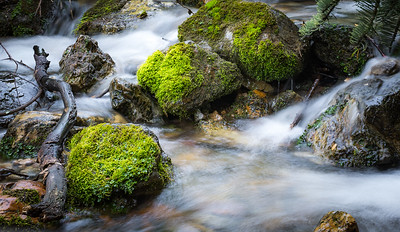 4-Advanced-Assigned_-_Long_Exposure-DNP-Phillip_Adams-Moss_On_The_Rocks