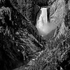 B&W-A-Jim Davis-Lower Yellowstone Falls