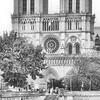 B&W-A-Mike Stevens-Notre Dame