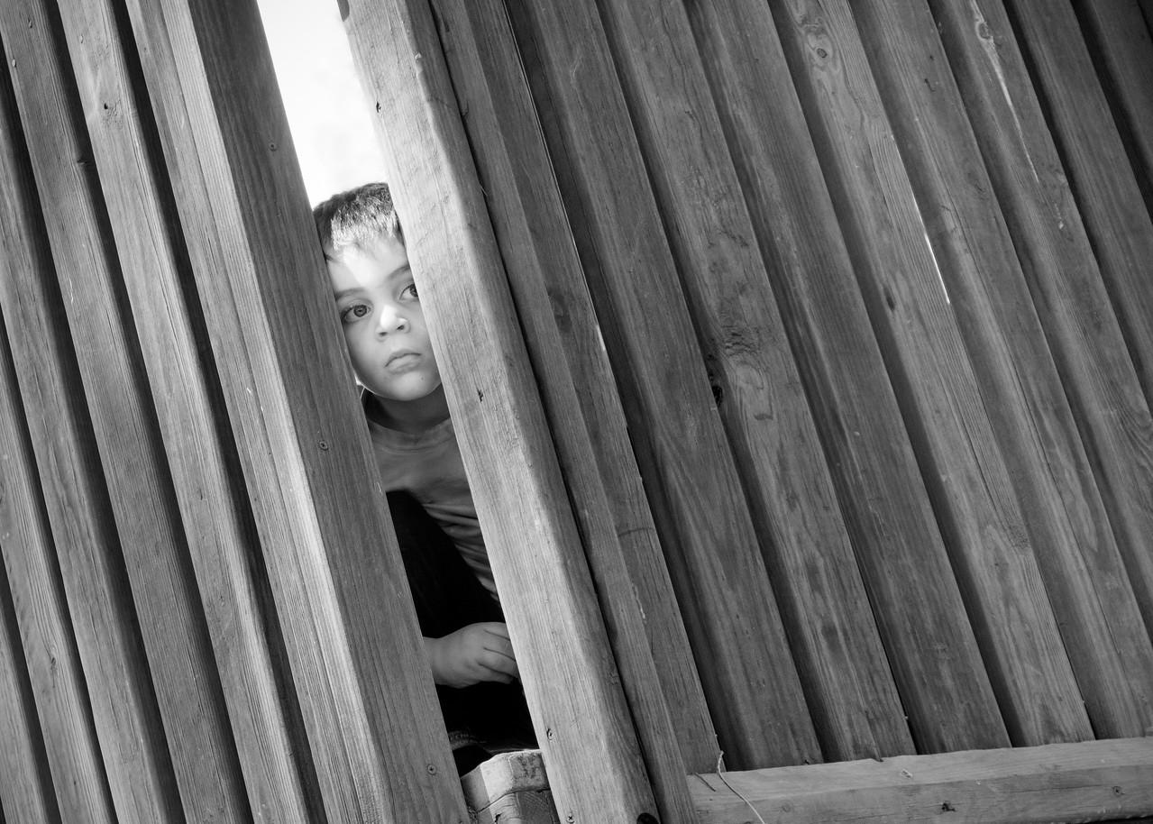 FILL-A-HM-Matt Smith-Fenced