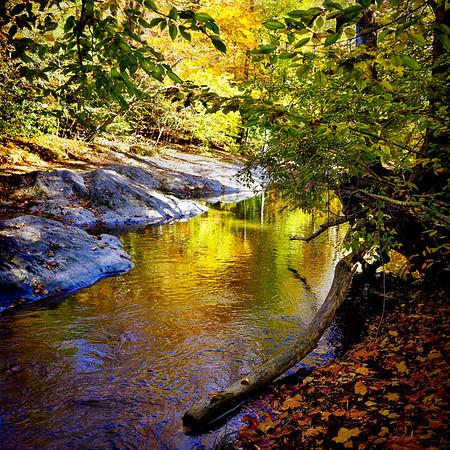OPEN-A-Grace Hill-Fall Reflections