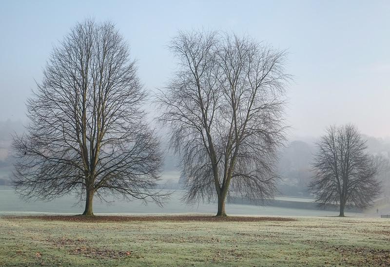 A Winter Morning in East Barnet