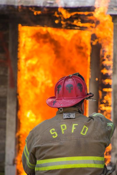 SEL-A-Steve Hoadley-Up in Flames