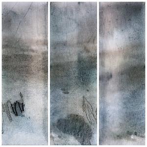 Bark Triptych