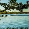 MOVE-A-Wendell Dance-Badin Lake