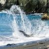 MOVE-A-Bill Matthews-Splash