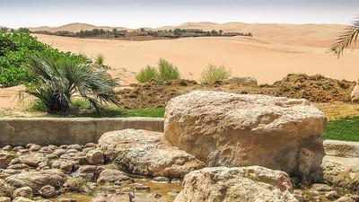 Bedhouin Village in the Desert