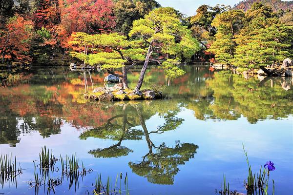 Kinkakaji Temple gardens, Kyoto