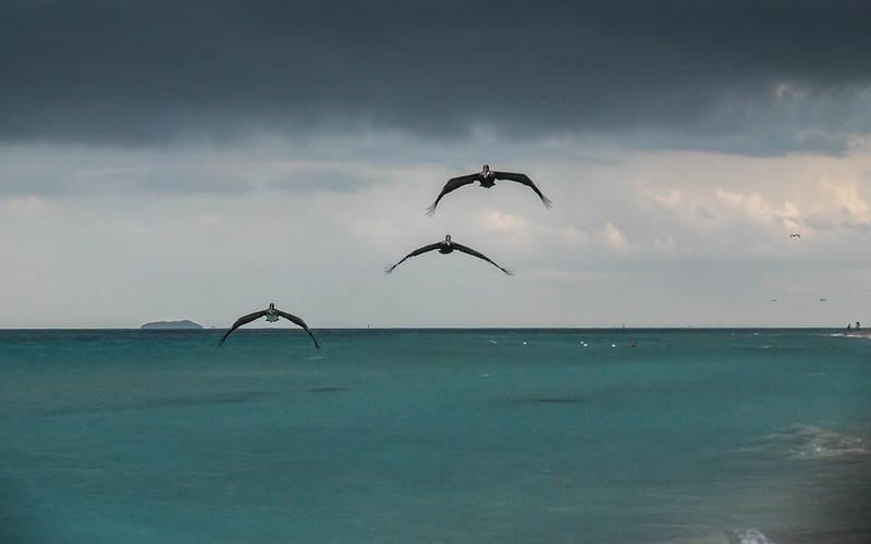 And Then There Were 3 (Seascapes 2)