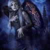 Fallen Angel (3rd)