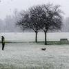 Snowy Park (5th)