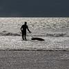 Loan Surfer