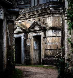 Inside the Circle of Lebanon, Highgate Cemetery