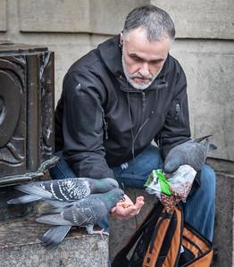 Pigeon Friends in Cambridge