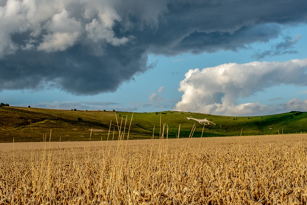 Storm Clouds Over Pewsey Vale