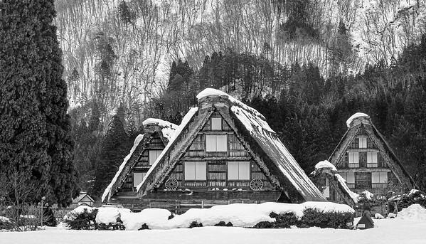 Ogimachi houses