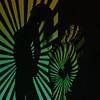 SHA-A-HM-Darryll Benecke-Shadows Model