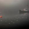 FLO-B-2nd-Andrew Steidinger-Maine Morning