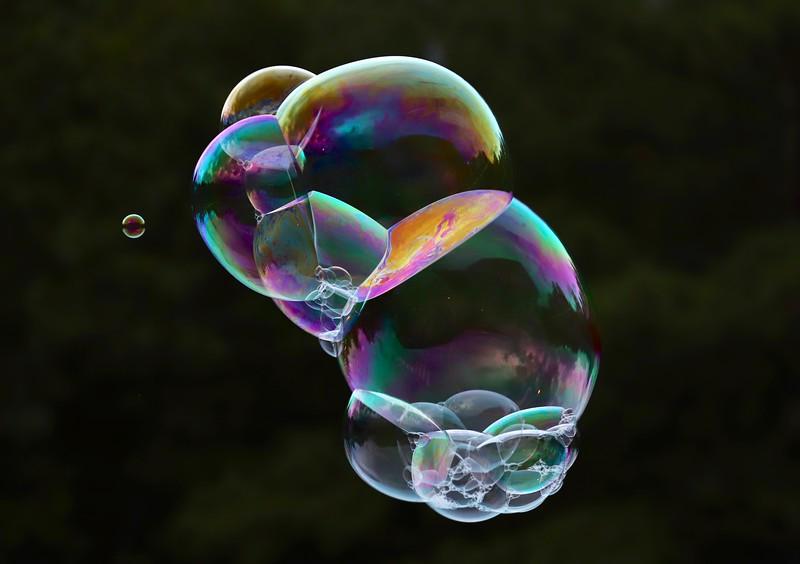 FLO-A-Kathryn Saunders-Bubbles