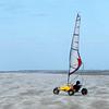 WHE-A-HM-Susan Bailey-Wind Surfer