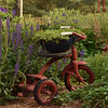WHE-B-HM-Susan Batts-Garden Tricycle