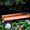 WHE-A- Bonny Henderson-Long Forgotten Wheels
