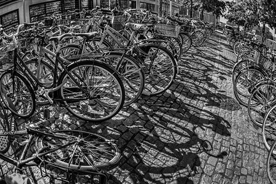 WHE-A-HM-Dale Jennings-Copenhagen Commute