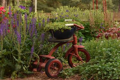WHE-B-HM-Susan Batts-Garden Tricycle