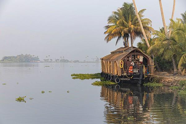18_Early morning, Keralean backwater_Jackie Harding