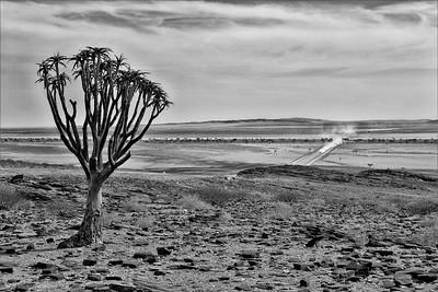 View overthe desert