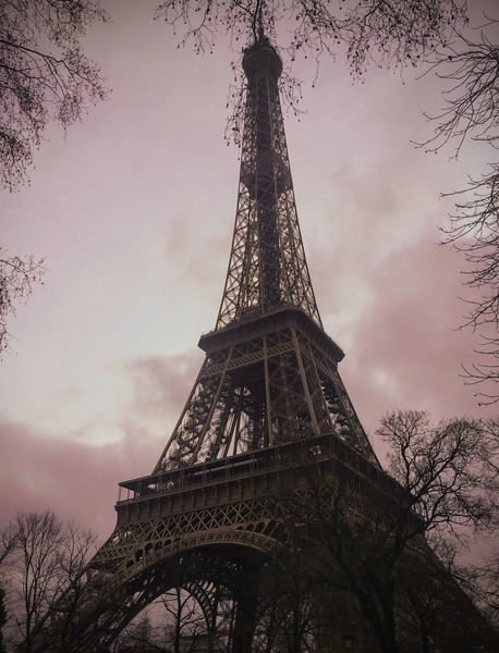 OLD-T1-Patricia Steingraber-Eiffel Tower