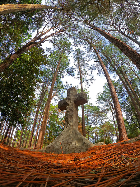 OLD-T1-HM-Shari Dutton-Monument in the Pines